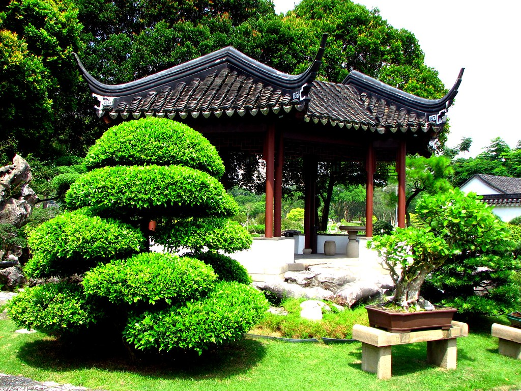 Bonsai garden singapore chinese garden bosai for Bonsai de jardin