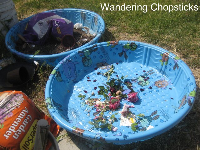 How to make a kiddie pool raised bed garden 3 for Koi pond kiddie pool