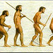 SEEO Search Engine Evolutionary Optimization,