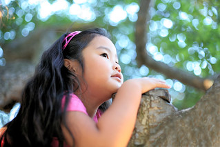 Gwen in the tree listening to music in the park | by Donna & Andrew