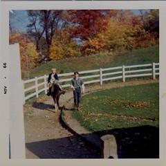 On the pony 10-22-66