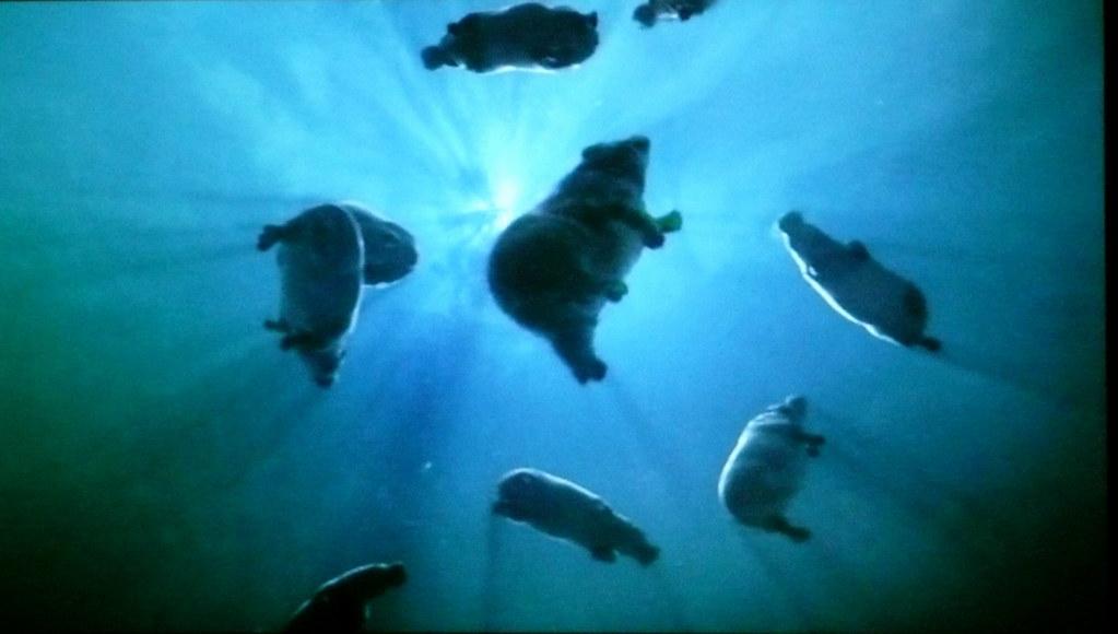 BBC One - Swimming Hip...