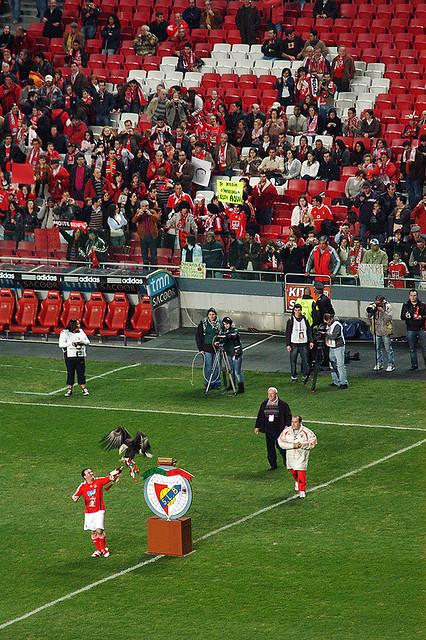 portuguese liga 2
