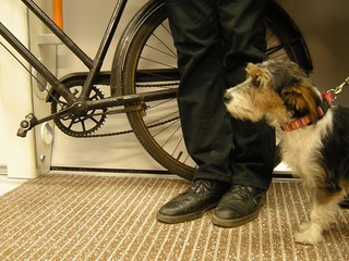 the East London Line's first dog meets the East London Line's first bicycle | by Martin Deutsch