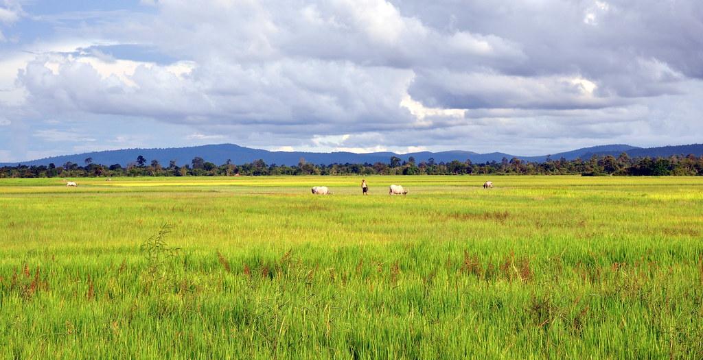 Pursat Cambodia  City new picture : Pursat Province Cambodia Pursat Province Cambodia
