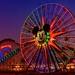 Disneyland Aug 2009 - Paradise Pier as the Sun sets