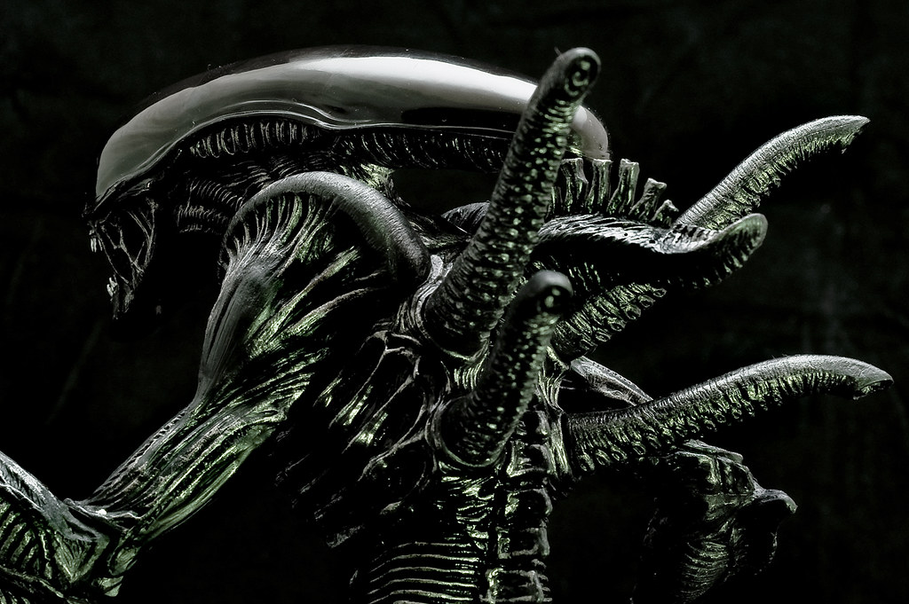 Image Result For Alien New Movie