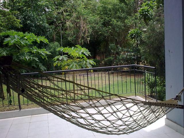 The balcony hammock and the garden explore abhishek for Balcony hammock