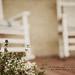 {Texture Tuesday} Garden eDition.......