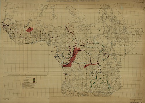 Skeletal Map of Tropical Africa Showing Distribution of Tsetse Flies | by uconnlibrariesmagic