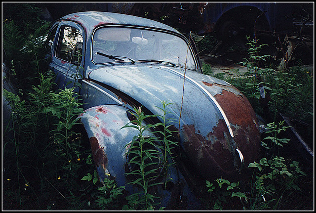 VW 1959 at the old junk-yard | This photos where taken on a … | Flickr