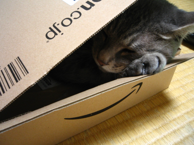 sleep in a box (なな October 6, 2009)
