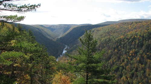 Pine Creek Gorge | by fishhawk
