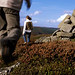 Black Mountain Brecon-Beacons National Park