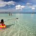 Paradise Low Tide
