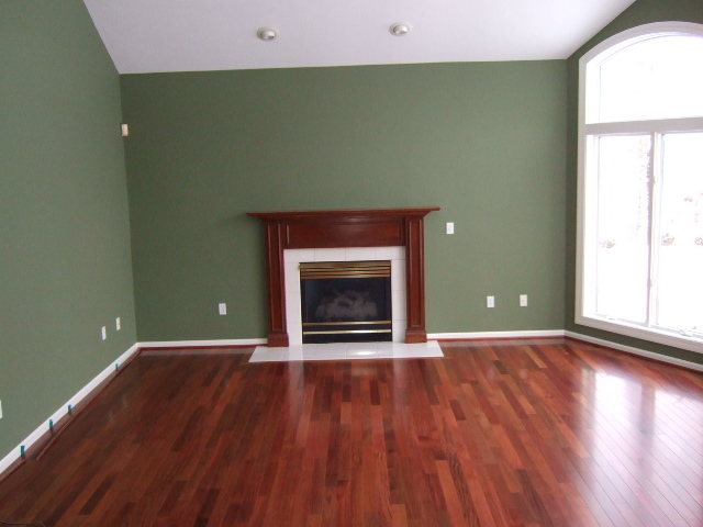pictures of painted living room walls real homes green living room benjamin s great ba 26366
