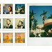 1999-2000 Places                    (Boca Raton, Hyde Park, Manhattan, Dead Sea)
