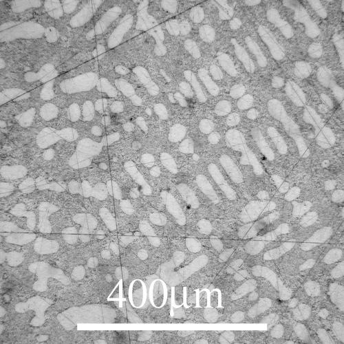 Al Si 12 Na 0 02 Wt Eutectic Alloy Refined Microst