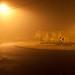Melbourne Fog