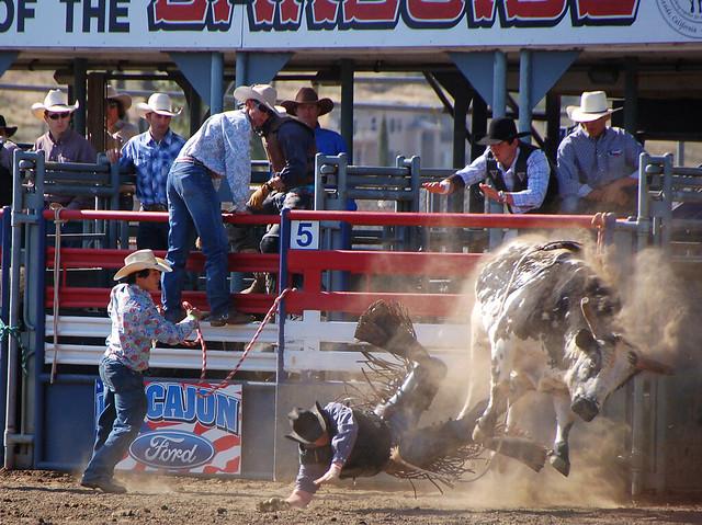 Pro Bull Riding Tour
