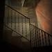 Passes cap a la llum / Steps toward the light