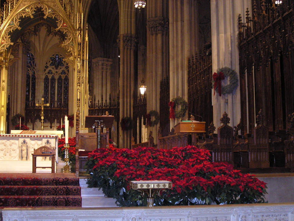 Christmas flowers at St Patrick's Cathedral, New York, Jan