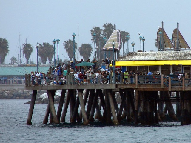 Redondo beach pier that is a heck of a lot of fishing for Redondo beach fishing report