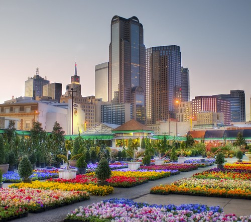 Downtown Dallas from the Flower Market | by Stuck in Customs