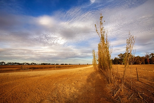 Drought - Australian landscape | by Tanya Puntti (SLR Photography Guide)