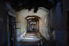 Hellingly Corridor Original