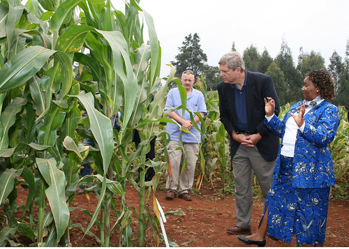Secretary Vilsack on his tour of the Kenya Agricultural Research Institute.