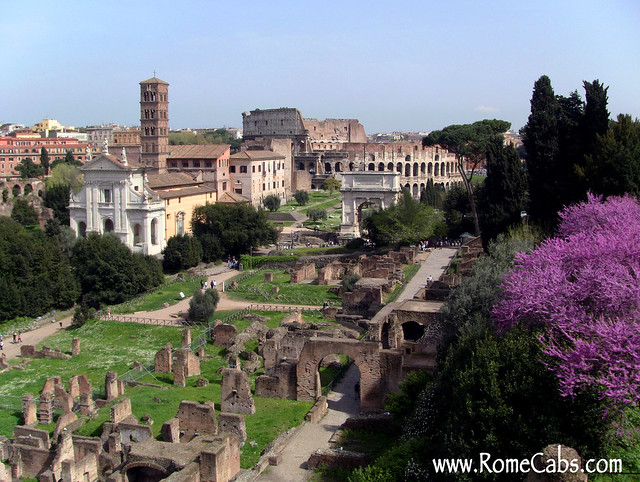 Roman Forum, Rome (Rome in A Day Tour)