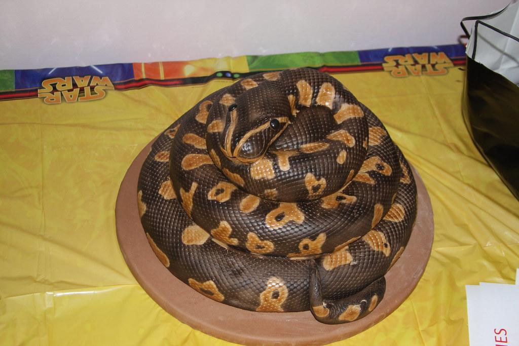 Cake Designs For 7th Birthday Boy : Ball python snake cake Peyton s 7th birthday ball python ...