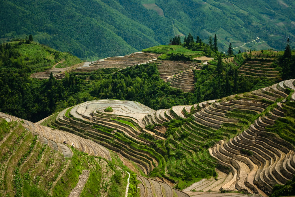 Longsheng the famous terraced rice fields in longsheng for What are terraces