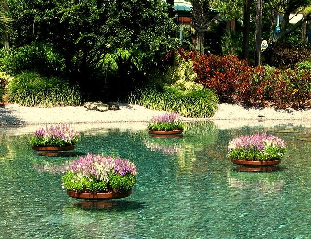 Floating flower pots zephyr flickr for Floating plant pots