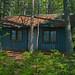Trail side cabin