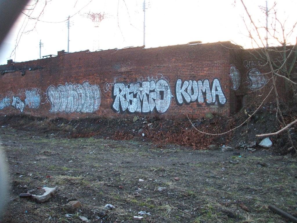 boner remio kuma coney island bathtub shitter flickr