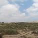 General desert view in Israel