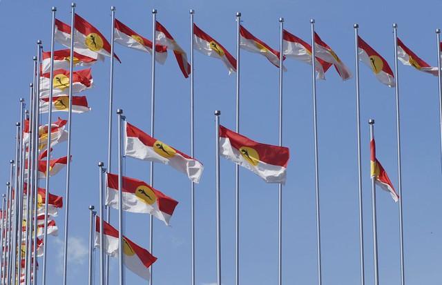 Image result for UMNO Flag