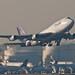 Thai Airways Boeing 747-4D7 HS-TGO Bowonrangsi บวรรังษี (28230)
