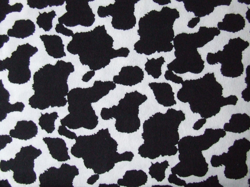 Cow Hide Texture Available For Use Please