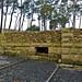 Vila romana e salinas de Toralla - Finca Mirambell - O Vao - Vigo - Pontevedra