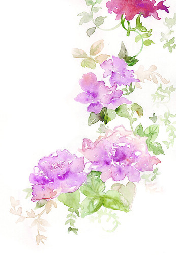 floral | by abigail mckenzie illustration