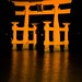 Torii at night