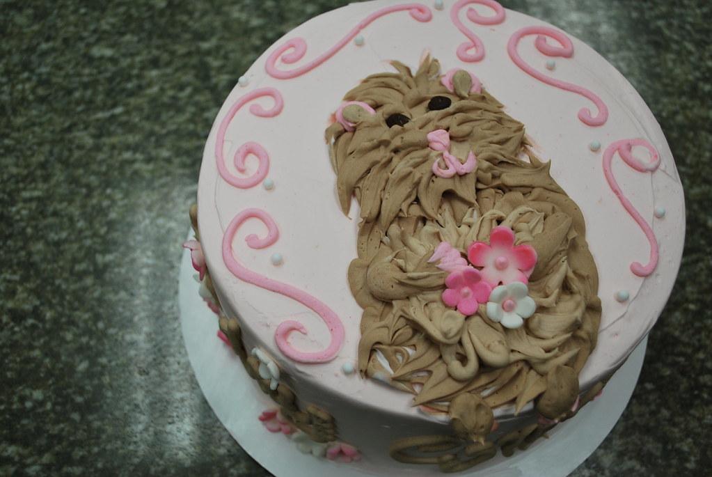 HAMSTER BIRTHDAY CAKE Buttercream Hamster Birthday Cake Flickr - Hamster birthday cake