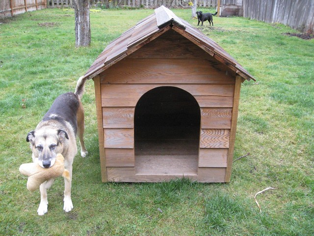 Dog House Designs Free