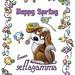 Gams_Spring