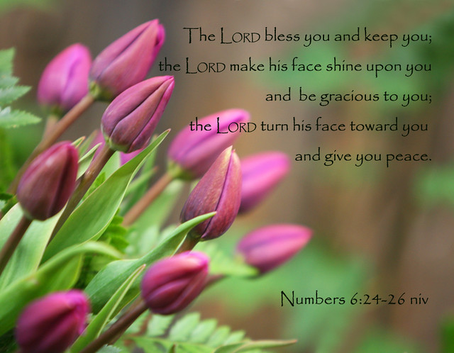 The Aaronic Blessing ~ For Elise