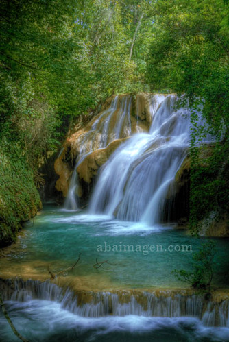 Lacandona Jungle Chiapas M 233 Xico Www Abaimagen Com