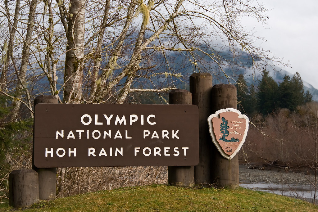Olympic National Park Entrance  The Entrance Of Olympic. Protect Signs. Types Signs Of Stroke. Developmental Milestone Signs. Jupiter Signs Of Stroke. Iso Signs Of Stroke. Fire Drill Signs Of Stroke. Kody Signs. Fast Track Signs Of Stroke